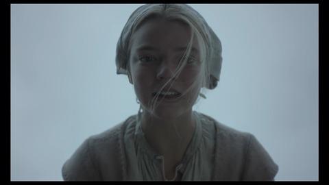 【ネタバレ】映画「ウィッチ」解説・考察:本作は観客に仕掛けられた巧妙なドッキリ?