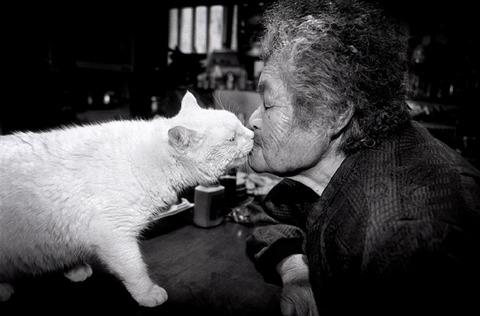 grandma-cat27