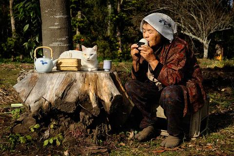 grandma-cat08