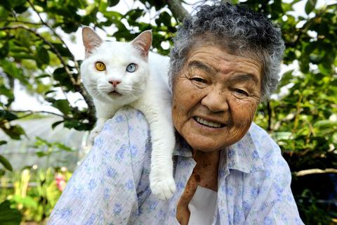 grandma-cat03