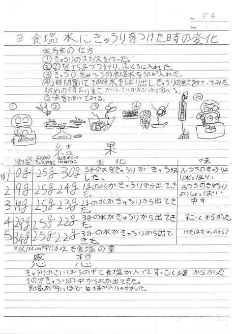 食塩水の性質ふき子小学5年_4