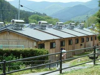 太陽熱温水器が並ぶ