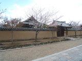 法隆寺の春