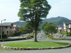 メイン通りのツリー
