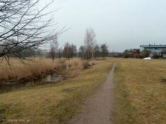 Eco-Viikkiヴィーキンオーヤ水路