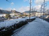広島も雪景色