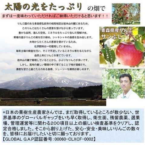 葉とらずサンふじ写真-13