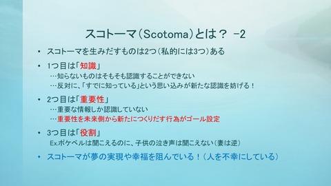 181122福祉講演会-05(スコトーマ-2)