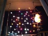 ベジタブル・カーテンでクリスマスを飾ろう!
