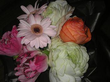 ひと足早く、春を告げる花々~