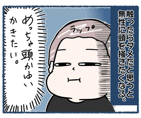 IMG_8739