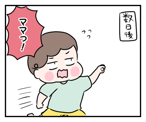 IMG_9481