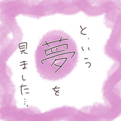 夢の話_008