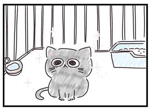 子猫がもづくになるまでの話1