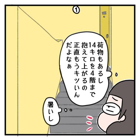 IMG_4208