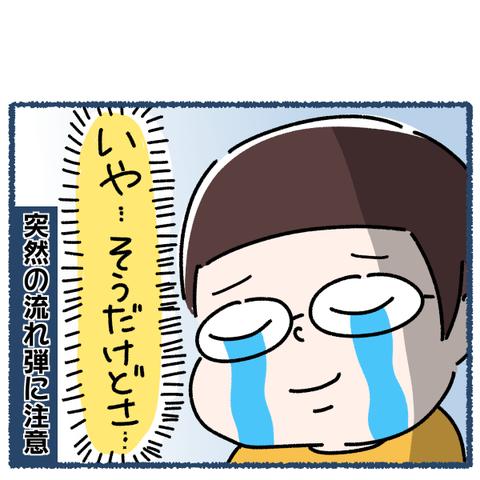 IMG_8587