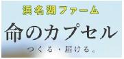 banner_18