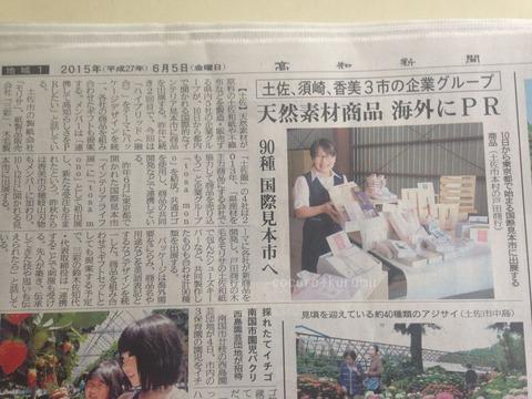 高知新聞hybridkochi