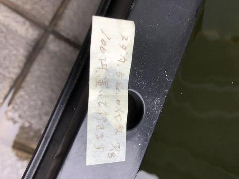 メダカ5匹の代金100円
