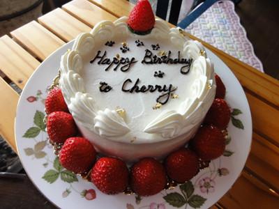 チェリー誕生日ケーキ