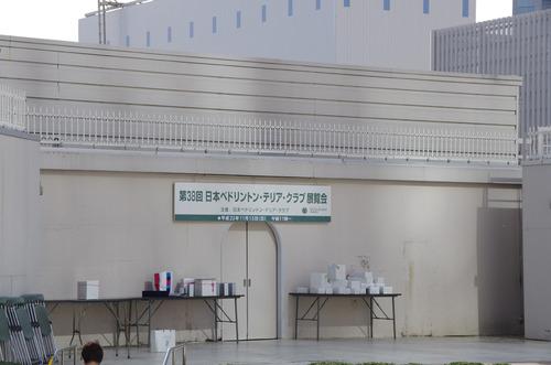IMGP2956-展覧会