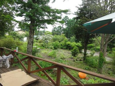 karuizawa広大な庭