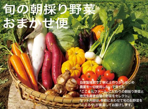 bnr_旬の朝採り野菜