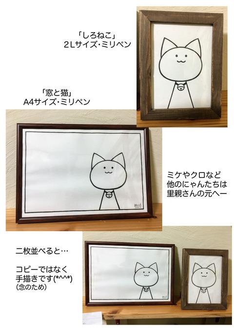 ひろちゃん