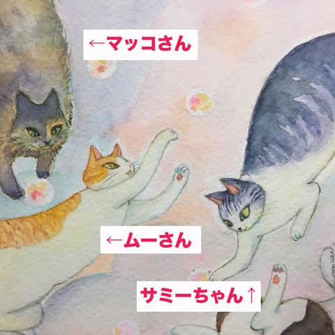 梶本ニャ2