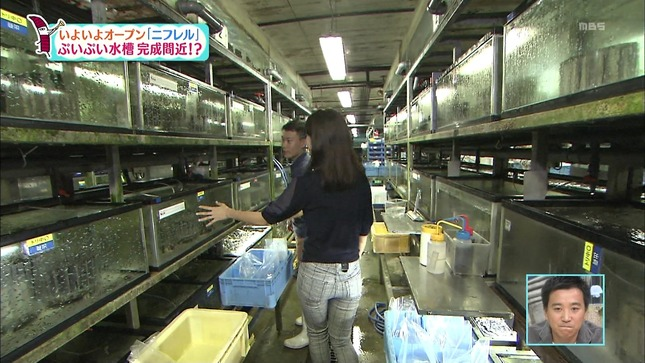 豊崎由里絵 ちちんぷいぷい 11