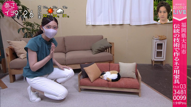 庭木櫻子 あさイチ 2