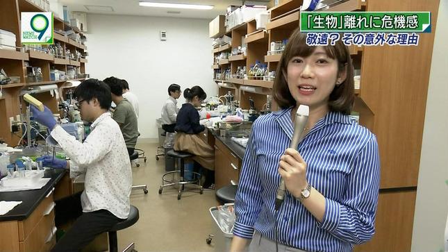 橋詰彩季 ニュースウオッチ9 6