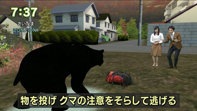 小郷知子 おはよう日本 11
