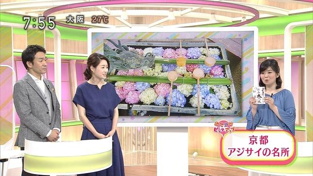 牛田茉友 おはよう日本 12