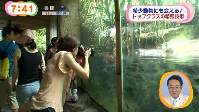 中野美奈子 めざましテレビ 11