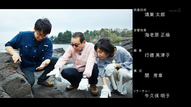 林田理沙 ブラタモリ 12