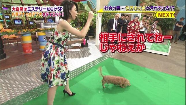 杉野真実 世界まる見え!テレビ特捜部 13