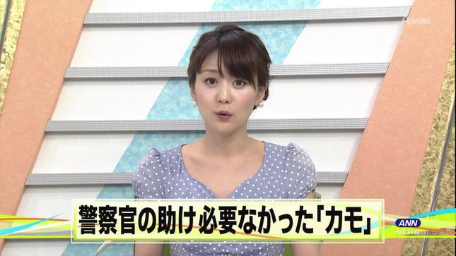 森葉子 ナニコレ珍百景 ANNnews 07