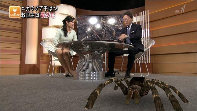 加藤桂子 国際報道201405