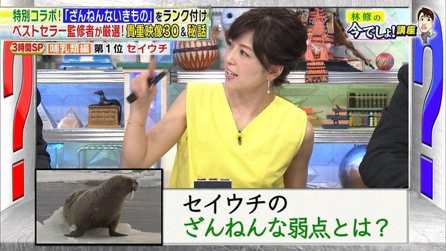 中野美奈子 林修の今でしょ!講座3時間SP 7