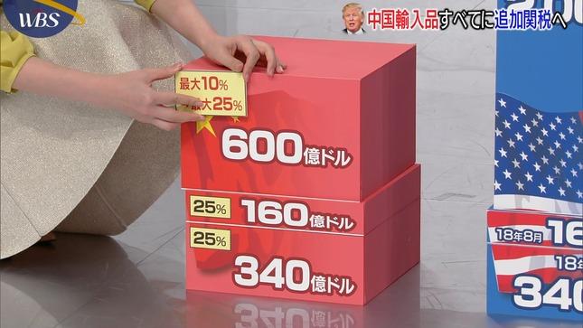 大江麻理子 須黒清華 ワールドビジネスサテライト 10