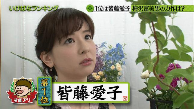 皆藤愛子 プレバト才能ランキング 12