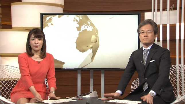藤田真奈美 国際報道2014 06
