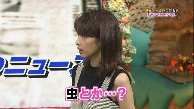 加藤綾子 世界へ発信!SNS英語術 天才!志村どうぶつ園 14