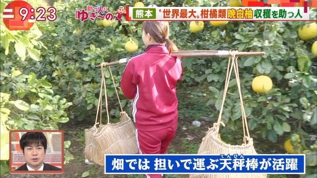 山本雪乃 モーニングショー 8