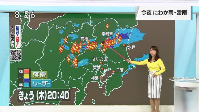 片山美紀 首都圏ネットワーク 9