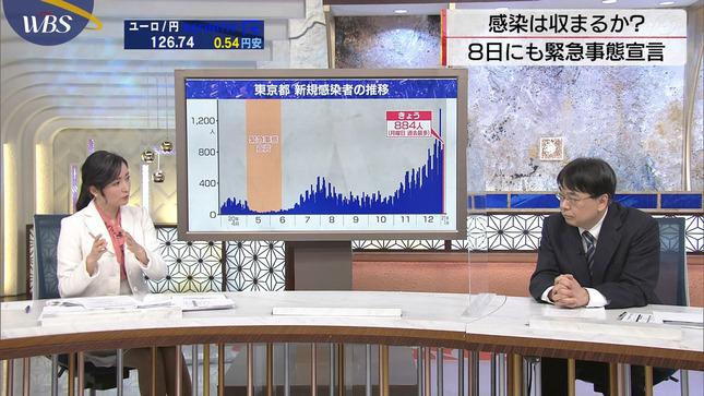 大江麻理子 ワールドビジネスサテライト 8