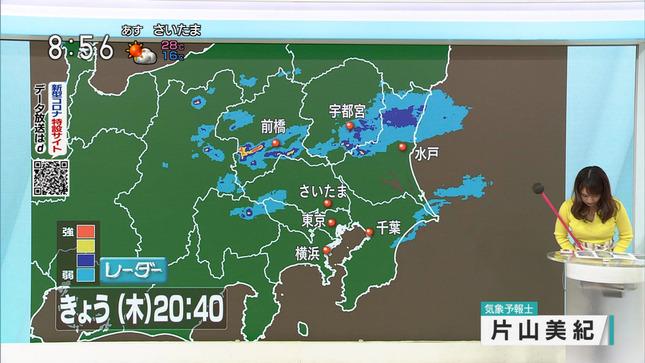 片山美紀 首都圏ネットワーク 7