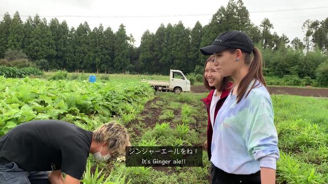 トラウデン直美農業チャンネル 9