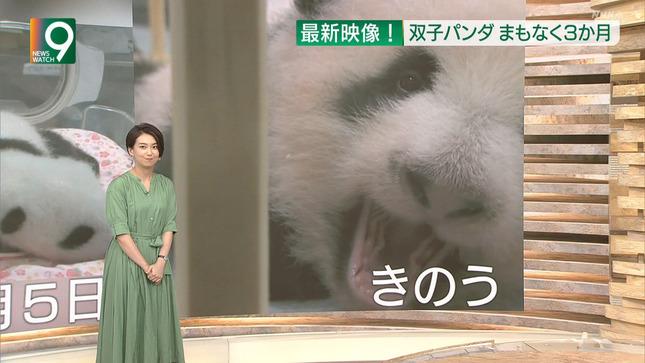 和久田麻由子 ニュースウオッチ9 東京2020パラリンピック 8